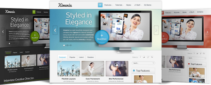 modele graphique template web